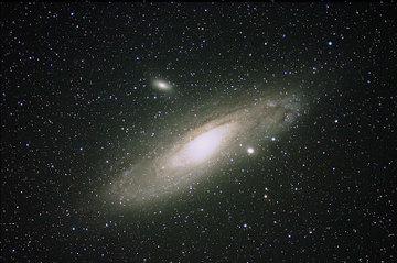 M31071006