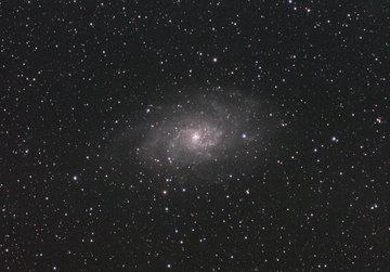 M33081002