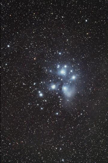 M45101106