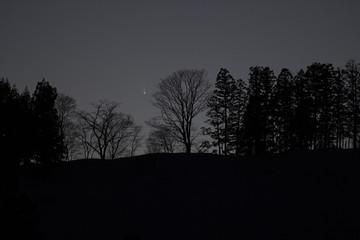 201303153